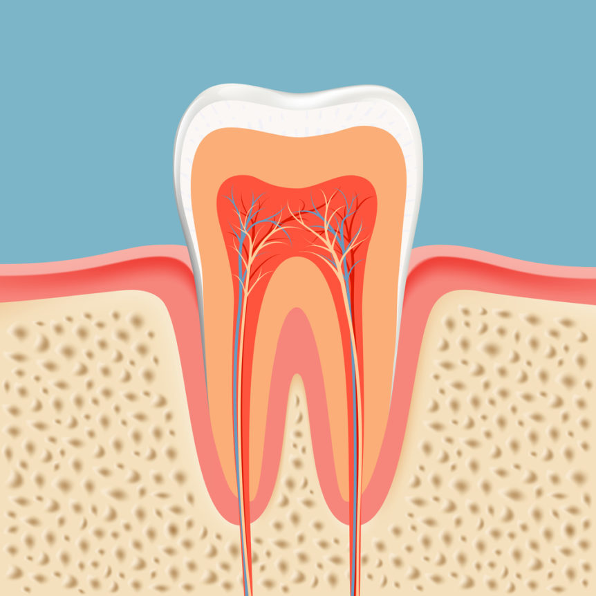 5 Root Canal Myths Debunked | Cosmetic and Family Dentistry of las colinas